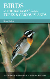 Birds of the Bahamas and the Turks and Caicos Islands by Bruce Hallett image
