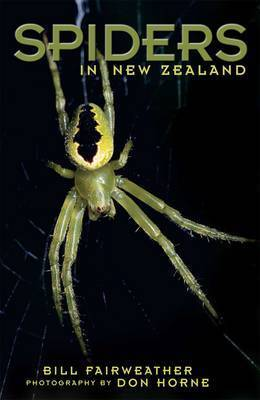 Spiders in New Zealand by Bill Fairweather