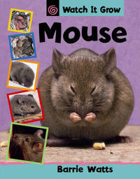 Mouse by Barrie Watts image