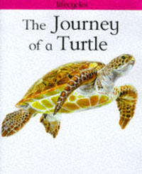 The Journey of a Turtle by Carolyn Scrace image