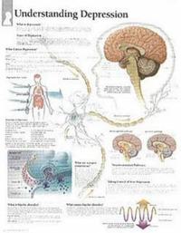 Understanding Depression image