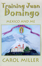 Training Juan Domingo: Mexico and Me by Carol Miller, Msn, RN-BC image