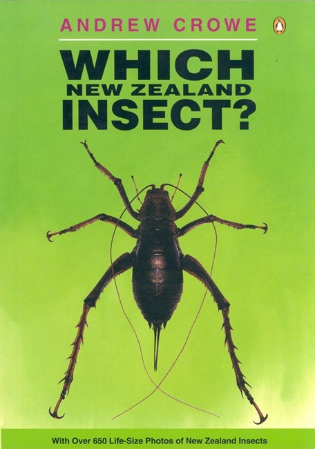 Which New Zealand Insect? (NZ) (LIANZA Award Winner) by Andrew Crowe image