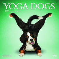 Yoga Dogs 2018 Square Wall Calendar by Inc Browntrout Publishers