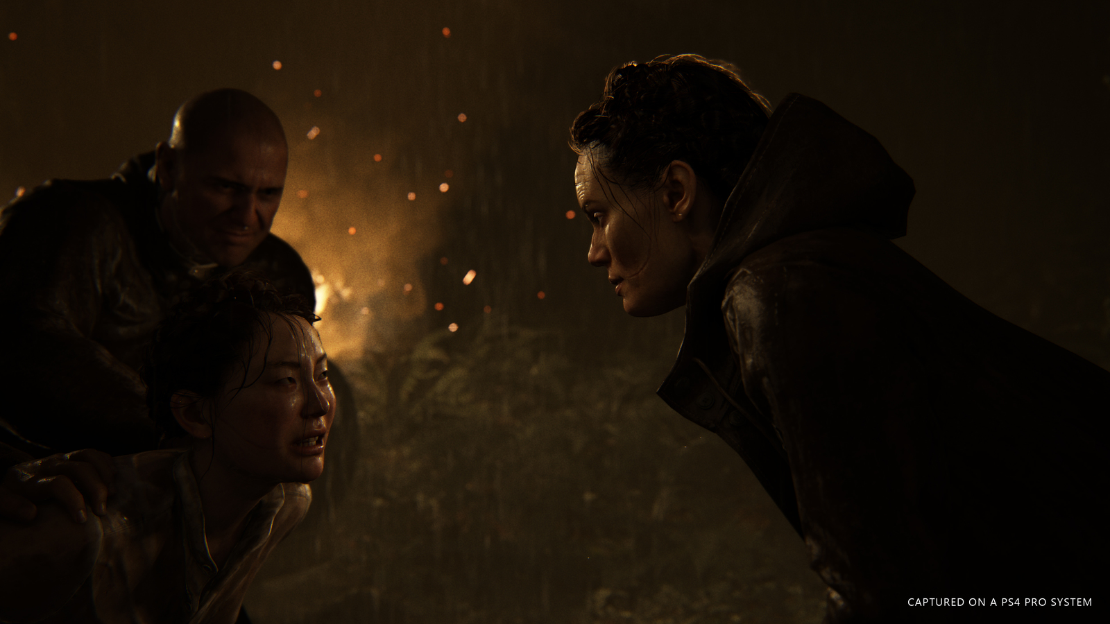 The Last of Us 2 for PS4 image