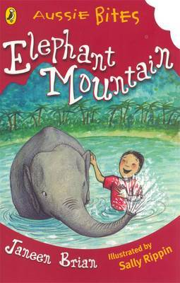 Elephant Mountain by Janeen Brian