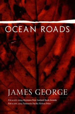 Ocean Roads by James George image