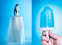 Qualy Penguin On Ice Popcicle Mould