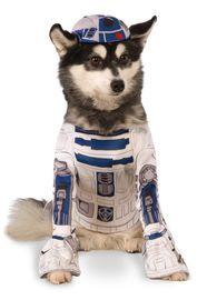 Star Wars: R2-D2 - Pet Costume (Large)
