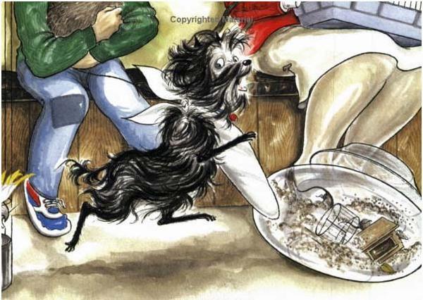 Hairy Maclary's Rumpus at the Vet by Lynley Dodd image