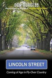 Lincoln Street by Don Burgess