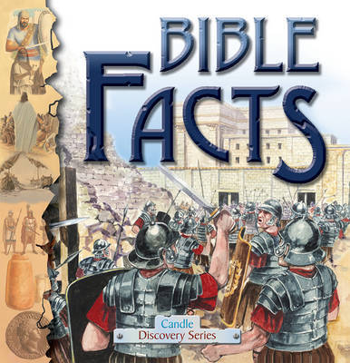 Bible Facts by Anne Adams image