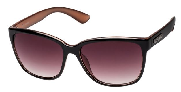 Fiorelli: Inge Sunglasses - Black Malt + Brown Lens