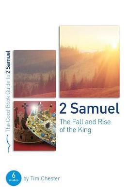 2 Samuel by Tim Chester image