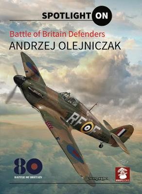Battle Of Britain Defenders by Andrzej Olejniczak