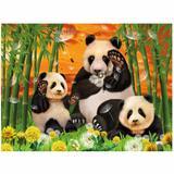 3D LiveLife: Panda Club