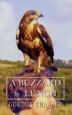 A Buzzard to Lunch by Gordon Channer image