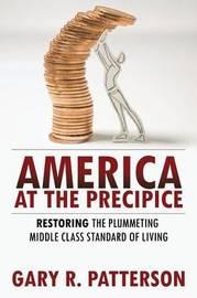 America at the Precipice by Gary R. Patterson