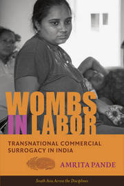 Wombs in Labor by Amrita Pande