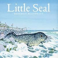 Little Seal by Benedict Blathwayt image