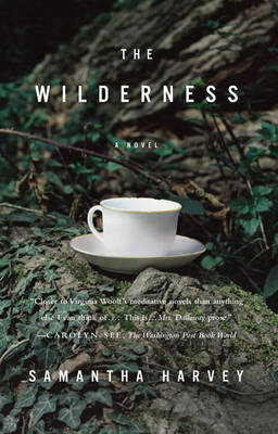 The Wilderness by Samantha Harvey image