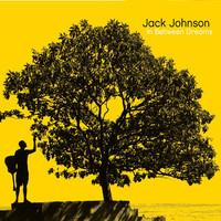In Between Dreams (LP) by Jack Johnson image