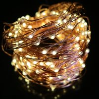 Solar Seed Lights - Fairy Lights (22 metres)