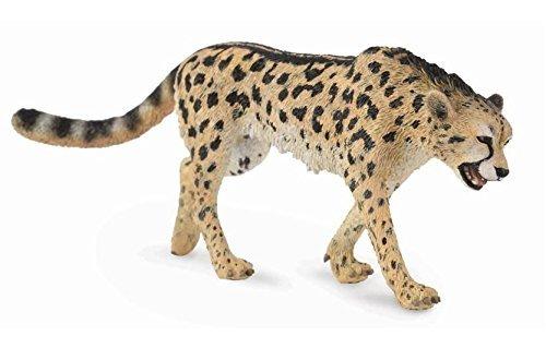 CollectA - King Cheetah
