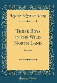 Three Boys in the Wild North Land by Egerton Ryerson Young image