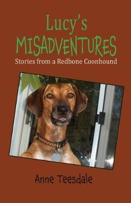 Lucy's Misadventures by Anne Teesdale image
