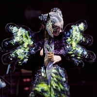 Vulnicura Live by Bjork
