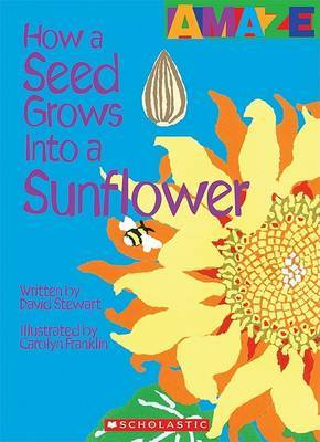 How a Seed Grows Into a Sunflower by David Stewart image