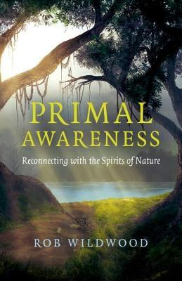 Primal Awareness by Rob Wildwood image