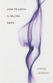 How to Catch a Falling Knife by Daniel Johnson image