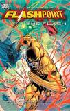 Flashpoint World Of Flashpoint The Flash TP by Scott Kolins