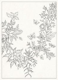 Secret Garden: 20 Postcards (Johanna Basford) by Johanna Basford