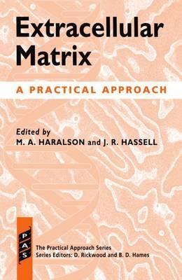 Extracellular Matrix image