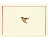 Hummingbird Flight Note Cards (14 Cards/Envelopes)