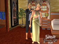 The Sims 2: Stuff Glamour for PC Games image