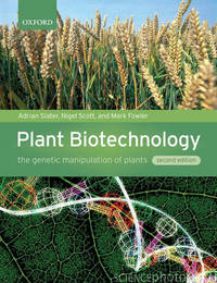 Plant Biotechnology by Adrian Slater image