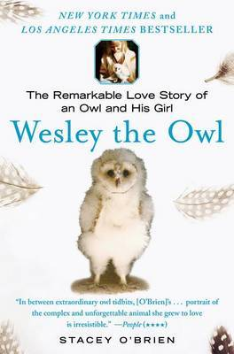 Wesley the Owl by Stacey O'Brien image