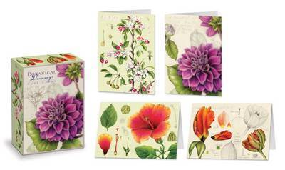 Botanical Drawings Note Cards by Wendy Hollender
