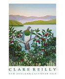 Clare Reilly Bird 2018 Wall Calendar