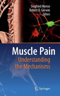 Muscle Pain: Understanding the Mechanisms image