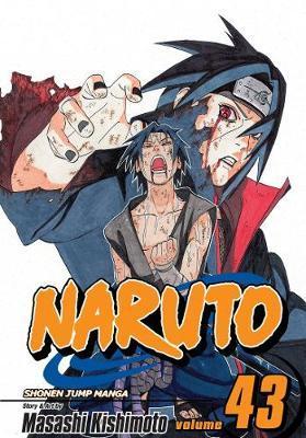 Naruto: v. 43 by Masashi Kishimoto