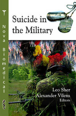 Suicide in the Military image