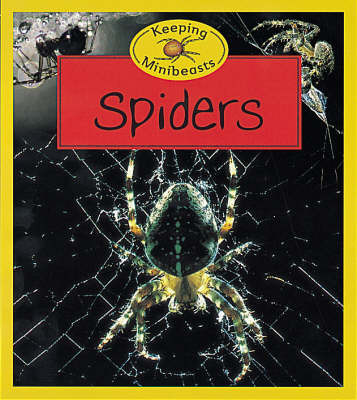 Spiders by Chris Henwood