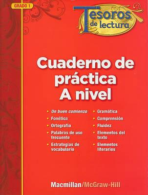 Tesoros de Lectura, a Spanish Reading/Language Arts Program, Grade 1, Practice Book, Pupil Edition by MacMillan/McGraw-Hill