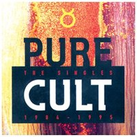 Pure Cult Anthology 1984/1995 on DVD