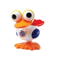 Tolo: Crazy Eyed Pelican